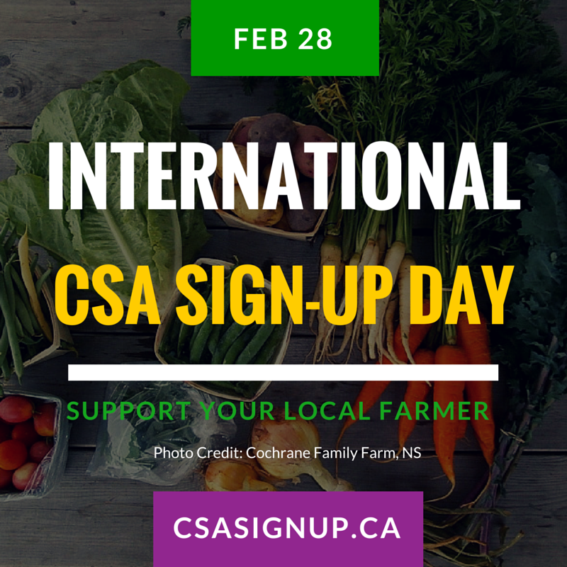 What is CSA?